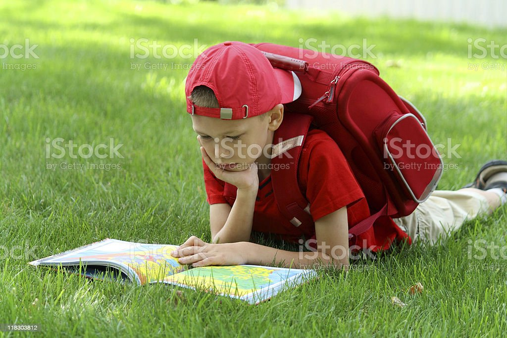 Boy Reading royalty-free stock photo