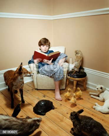 istock Boy reading story to stuffed animals 56180601