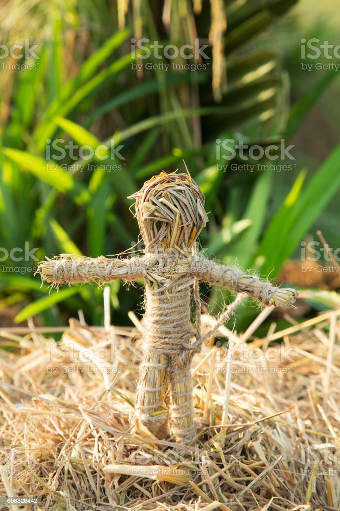 Boy Rice straw puppets in organic form stock photo