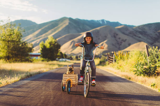 Boy Riding Bicycle with Dog in Side Car stock photo
