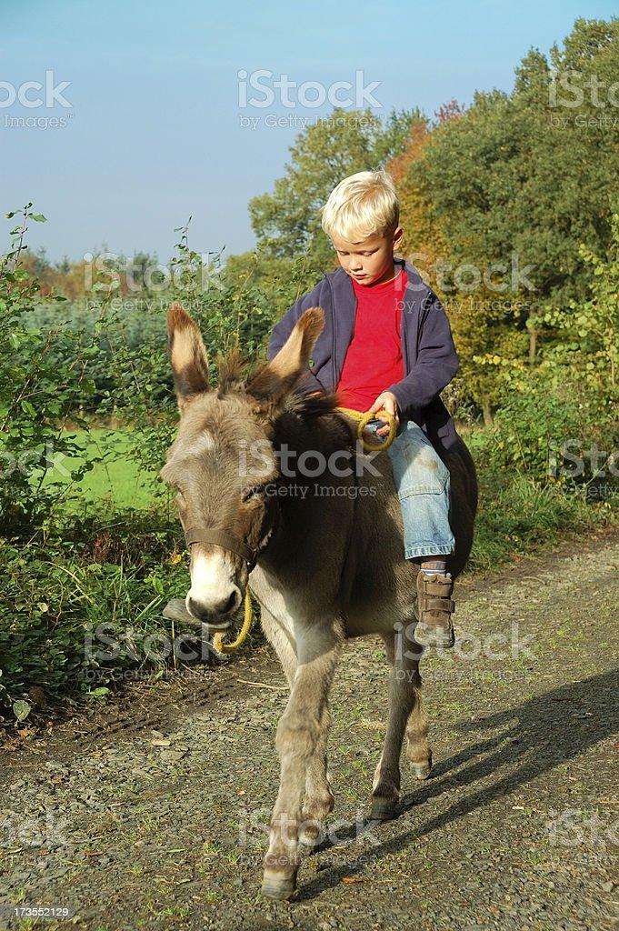 Ragazzo equitazione da somaro - foto stock