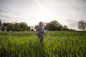 Four years old boy running in a green field during sunset.