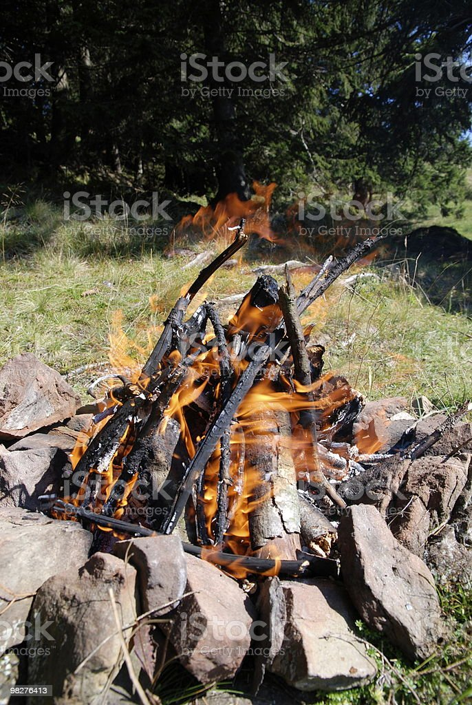 Boy scout makes a natural fire pit in the forest royalty-free stock photo