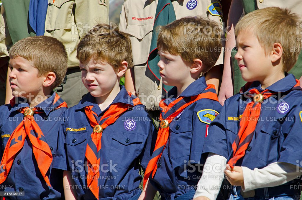 Boy Scouts and Cub Scouts stock photo