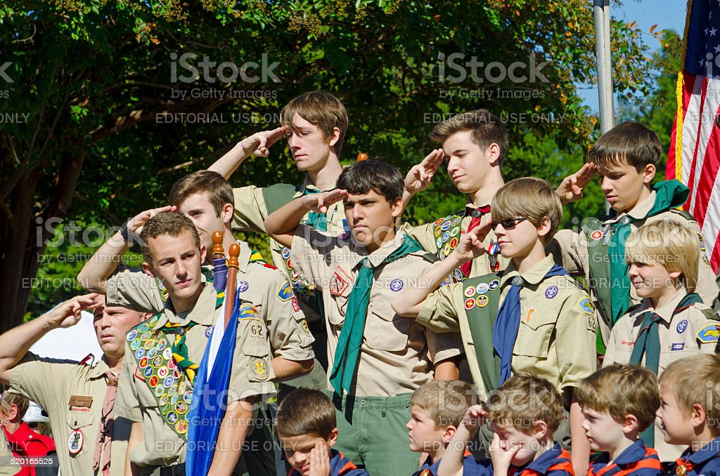 Boy Scouts Saluting stock photo