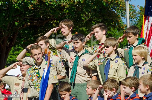 Matt The Scout Boy Credits Version 2: Boy Scouts Saluting Stock Photo & More Pictures Of