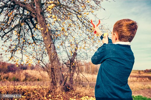 istock Boy shoots down apples from a slingshot 1065341314