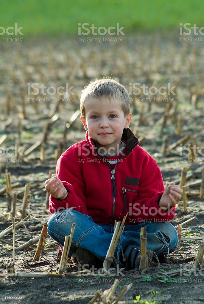Boy sitting in a harvested cornfield royalty-free stock photo