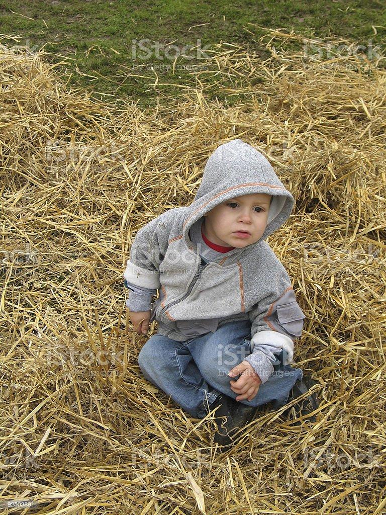 Boy Sitting in Hay. royalty-free stock photo