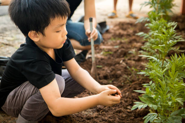 A boy sitting to plant trees in the hole with his hands stock photo