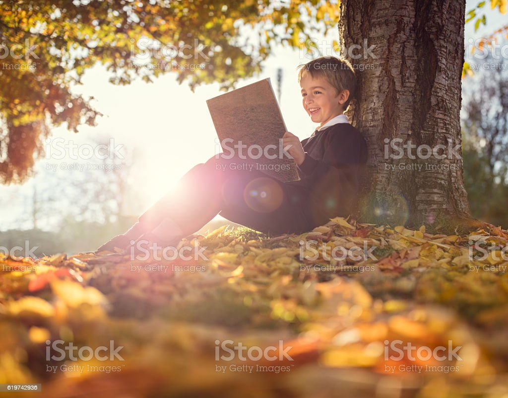 Boy sitting under a tree reading book