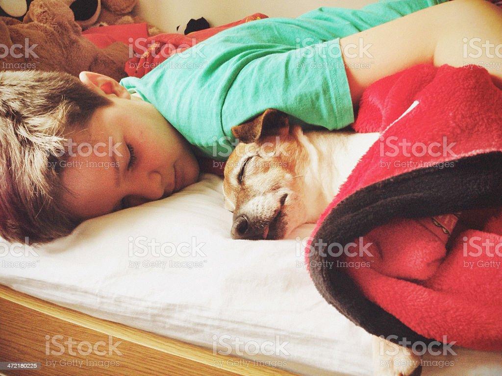 Boy sleeping with dog stock photo