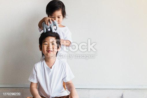 The preschool boy smiles as his toddler brother puts a toy elephant on his head.