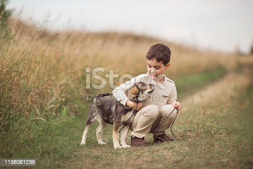 Boy squats and hugs dog in field in autumn