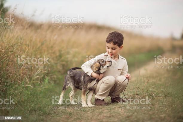 Boy squats and hugs dog in field in autumn picture id1138081239?b=1&k=6&m=1138081239&s=612x612&h=5f4zdsa1amfumodzmecq541fwbv 3zosafgo1vv9rmw=