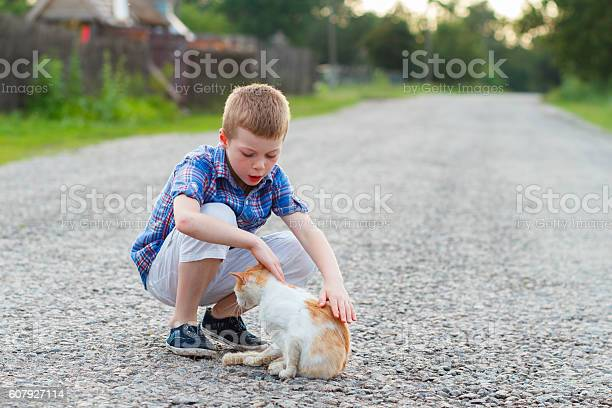 Boy stroking cat on a rural asphalt road picture id607927114?b=1&k=6&m=607927114&s=612x612&h=6rijjdub5llgbj 12zsgyt1mdkhgi5bxkxq170yj4xg=