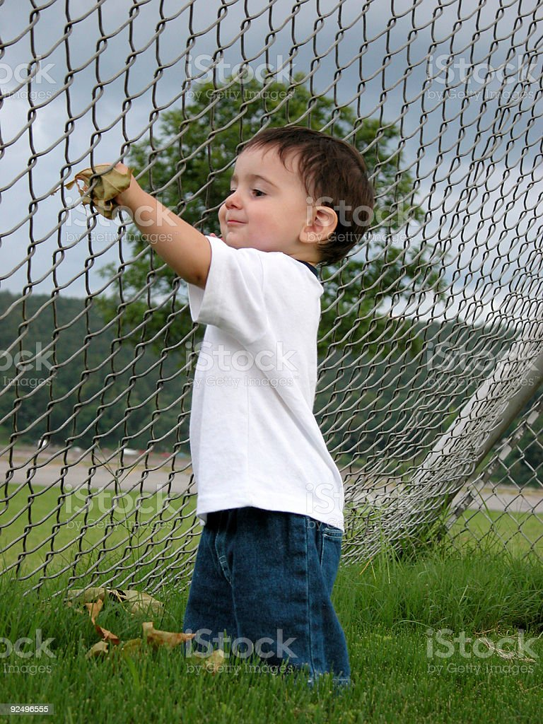 Boy Stuffing Leaves Through the Fence royalty-free stock photo