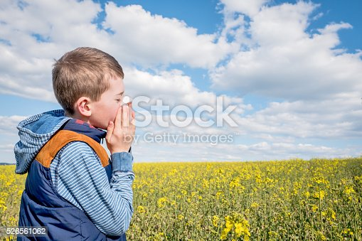 629307146istockphoto Boy suffering from pollen allergy 526561062