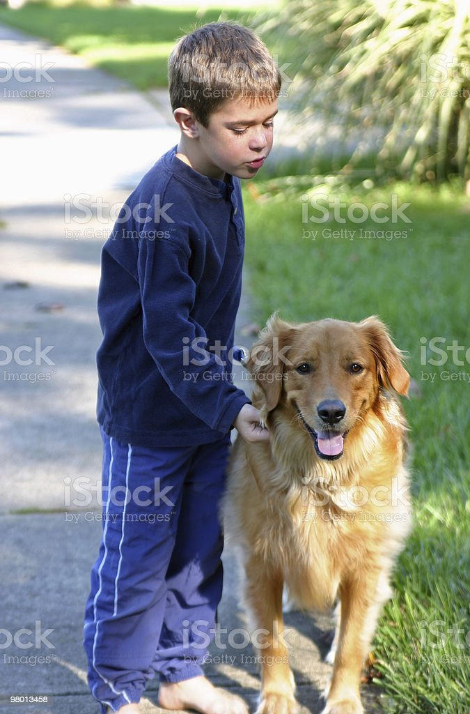 Boy Walking Dog royalty free stockfoto