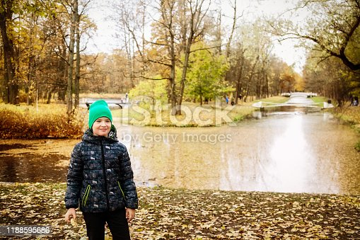 A boy walks in the autumn Park