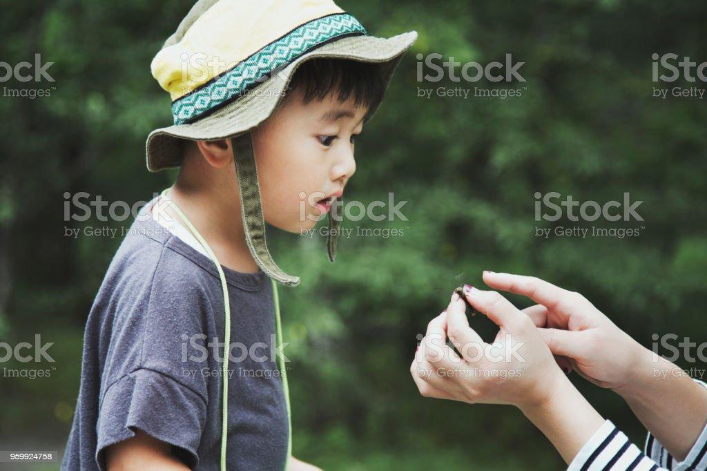 彼の母は森でキャッチするトンボを見つめる少年 ストックフォト