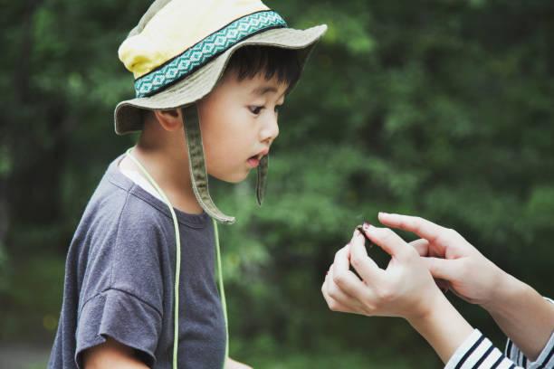 彼の母は森でキャッチするトンボを見つめる少年 - 子供時代 ストックフォトと画像