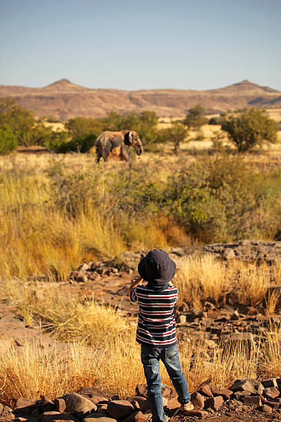Boy Watching an Elephant through binoculars on safari in Africa stock photo