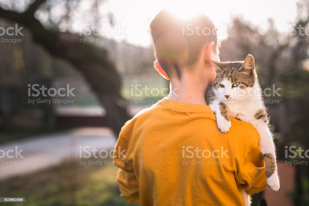 Boy with a cat on his shoulder stock photo