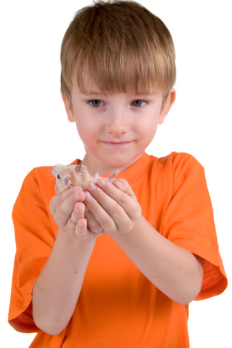 Boy with a hamster
