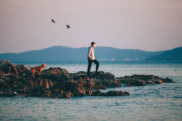 a boy with a protective medical mask, he enjoys sunset with his dog on a rocky shore. - lepro stock pictures, royalty-free photos & images