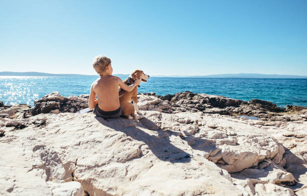 Boy with beagle dog sitting together on rocky sea coast at sunny afternoon stock photo