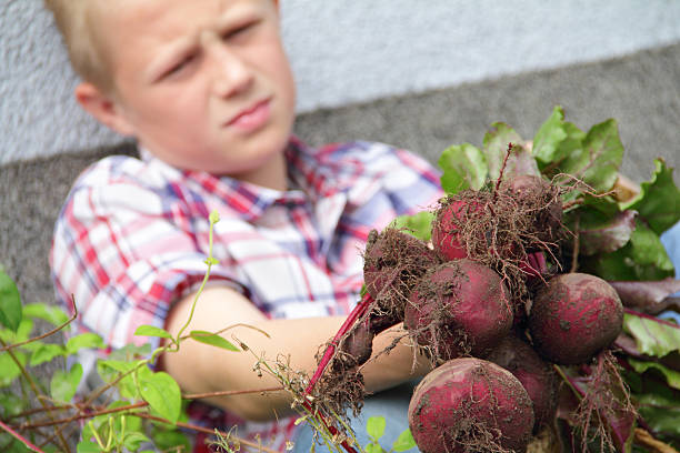 boy with beetroot stock photo
