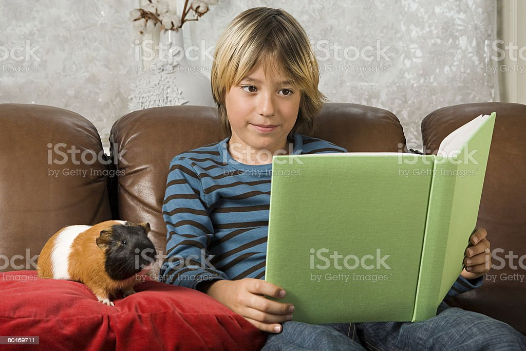 Boy with book and guinea pig 免版稅 stock photo