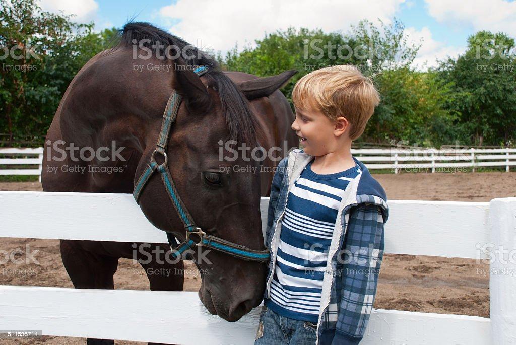 Junge mit braunen Pferd - Lizenzfrei Pferd Stock-Foto