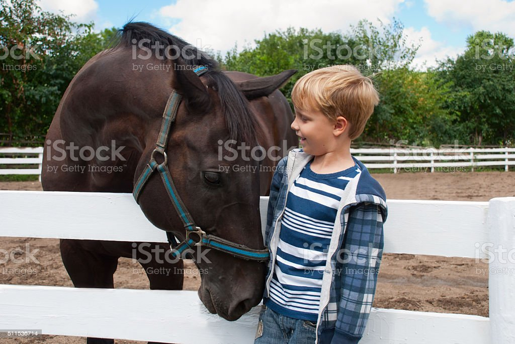 Boy with brown horse stock photo