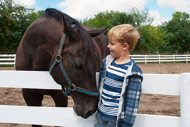 Boy with brown horse Smiling boy meets with the brown horse pony stock pictures, royalty-free photos & images