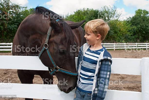 Junge Mit Braunen Pferd Stockfoto und mehr Bilder von Pferd