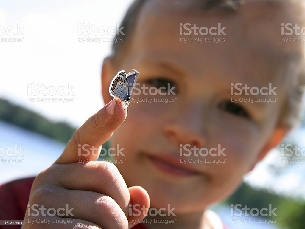 Boy with Butterfly royalty-free stock photo