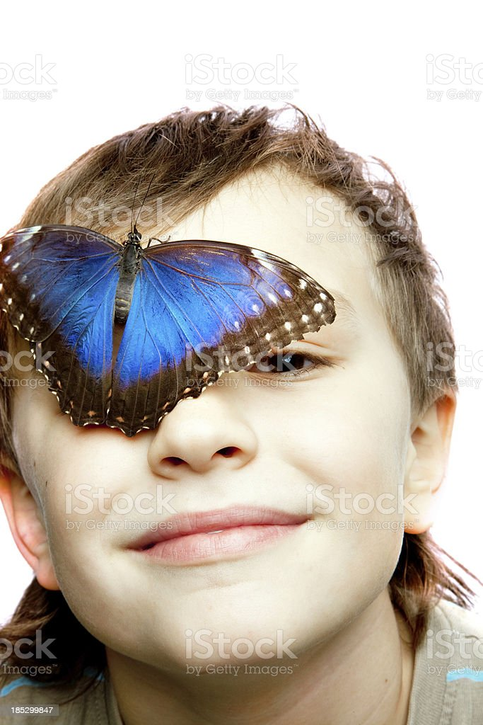 Boy with butterfly. royalty-free stock photo