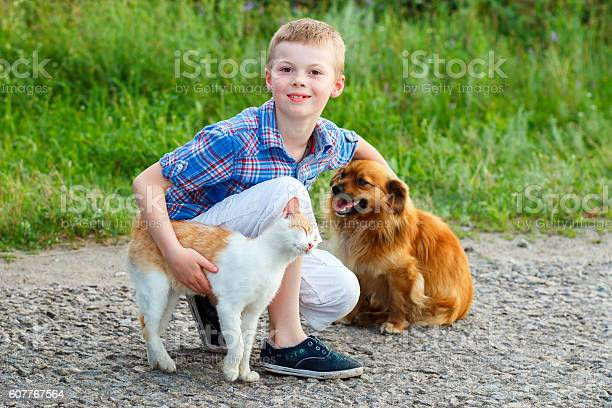 Boy with cat and dog sitting on the road picture id607767564?b=1&k=6&m=607767564&s=612x612&h=ay8uysanrmpl xrvejautfnsy 1jsg6mezposcrb7ei=