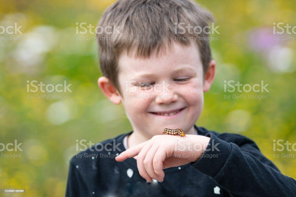 boy with caterpillar young boy enjoys looking at caterpillar on his hand Awe Stock Photo
