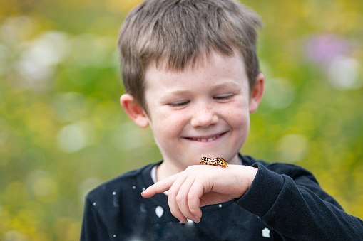 Boy With Caterpillar Stock Photo - Download Image Now
