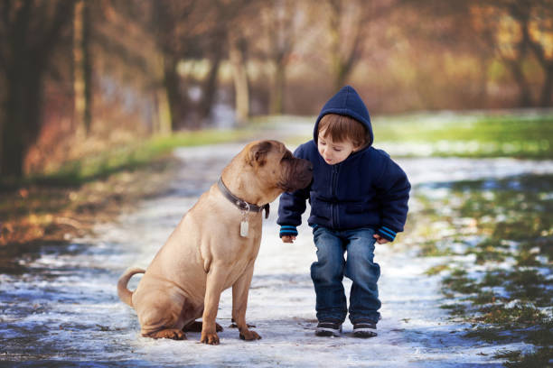 boy with cute dog, giving him a kiss, wintertime - kiss стоковые фото и изображения