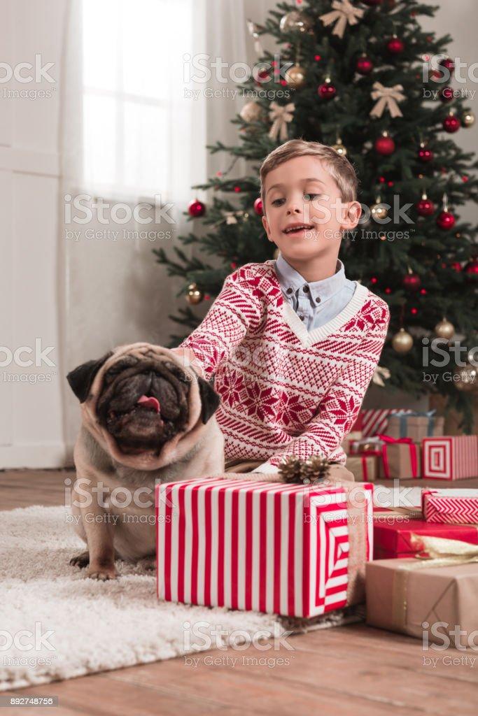 boy with cute pug on christmas stock photo