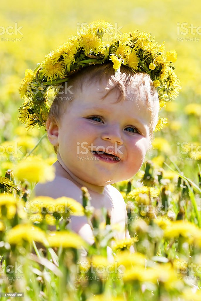 Boy with diadem from dandelions seating in spring flowers royalty-free stock photo