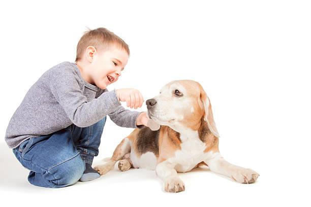 Boy with dog picture id496887788?b=1&k=6&m=496887788&s=612x612&w=0&h=sqn1kfhnq5ymt4itg9k7nh5pq1rhdtjw1zhznhhwgbe=