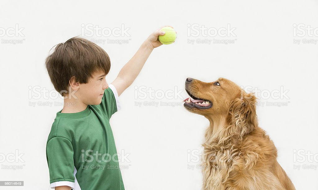 Boy with Dog royalty-free stock photo