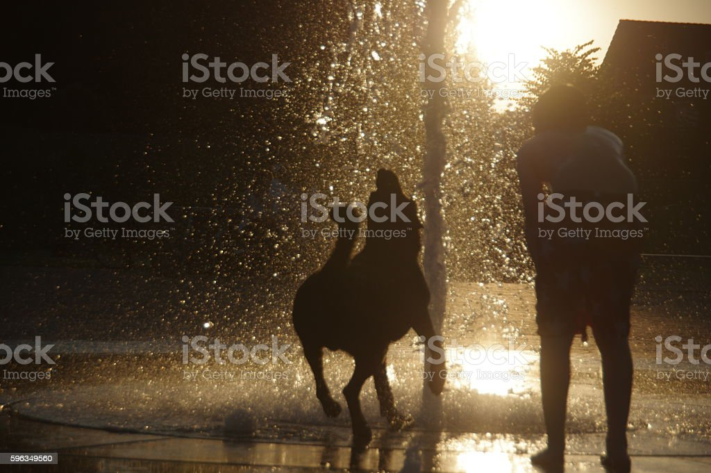 Boy with dog under the city fountain royalty-free stock photo