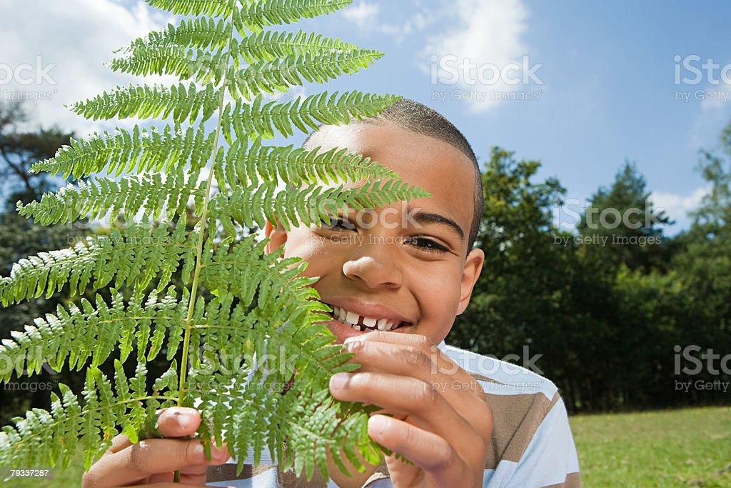 Boy with fern leaf 免版稅 stock photo