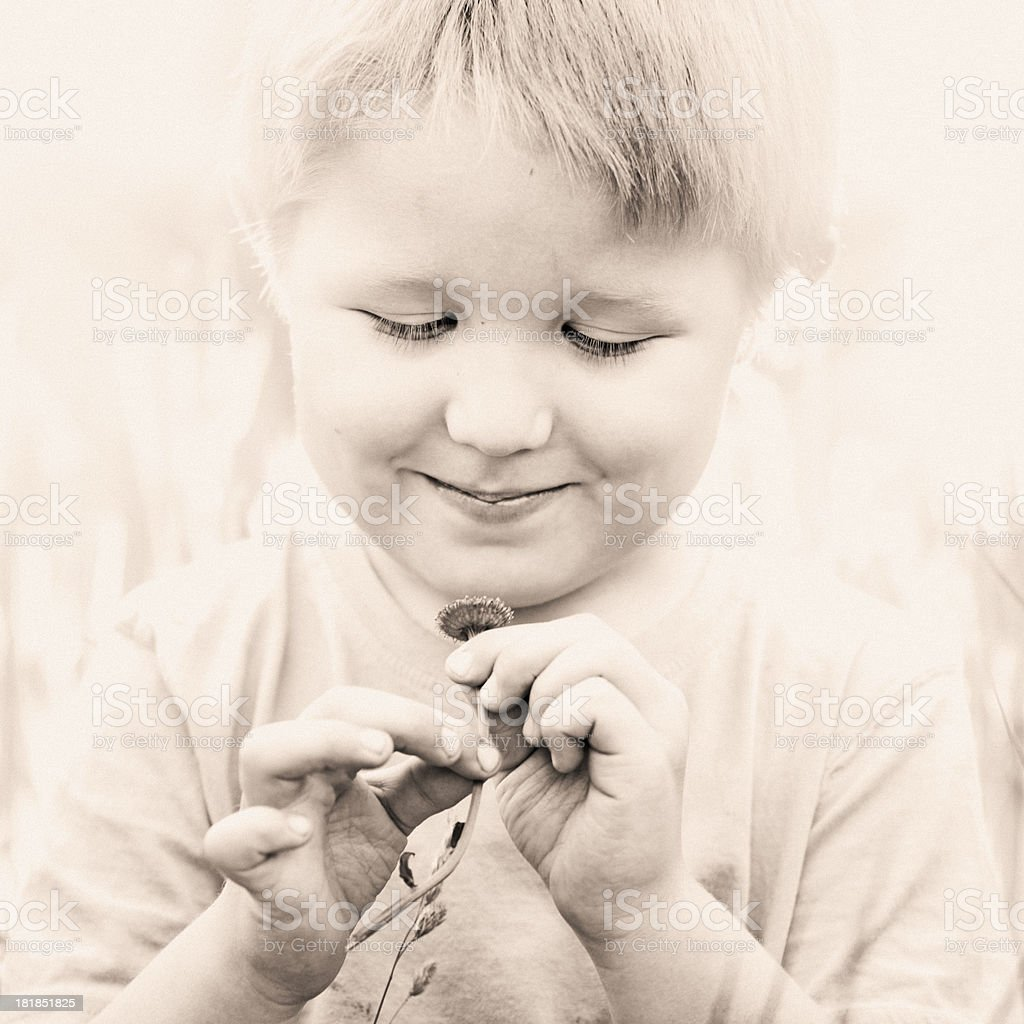 Boy with flower royalty-free stock photo